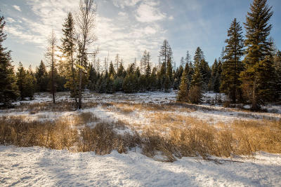 Whitefish Residential Lots & Land For Sale: 1242 Falling Leaf Court