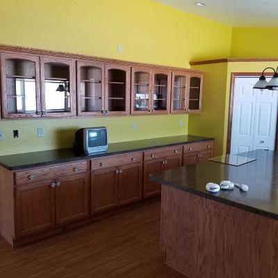 Lake County Single Family Home For Sale: 41685 Peace Road