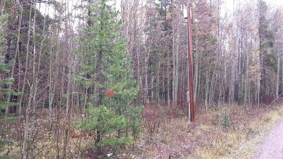 Flathead County Residential Lots & Land For Sale: 129 Slippery Bill Road