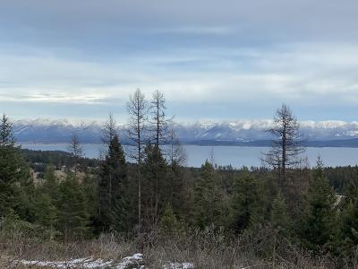 Flathead County Residential Lots & Land For Sale: Nhn Blacktail Heights Road