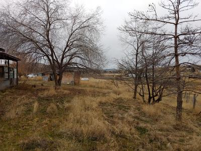 Stevensville Residential Lots & Land Under Contract Taking Back-Up : 838 Bighorn Lane
