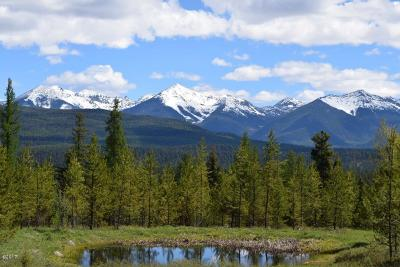 Seeley Lake Residential Lots & Land For Sale: 818 Beaver Creek Road