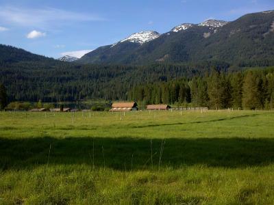 Alberton, Saint Regis, Huson, Heron, Noxon, Paradise, Superior, Thompson Falls, Trout Creek Residential Lots & Land For Sale: Nhn Golden Pond Drive