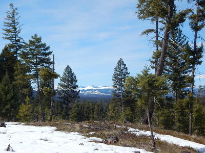 Seeley Lake MT Residential Lots & Land For Sale: $75,000