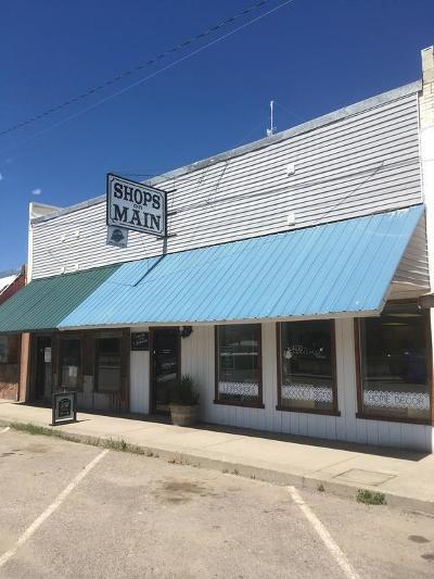 Plains Single Family Home For Sale: 212 East Railroad Avenue