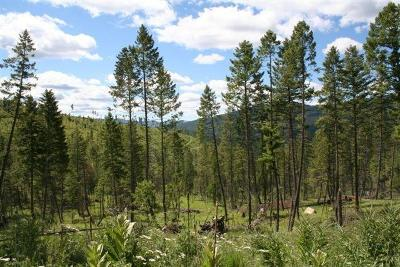Kalispell Residential Lots & Land For Sale: Nhn Ashley Lake Road
