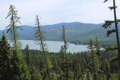 Kalispell Residential Lots & Land For Sale: Nhnn North Ashley Lake Road