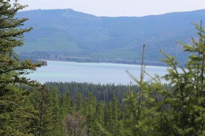 Kalispell Residential Lots & Land For Sale: Nhn North Ashley Lake Road