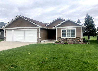 Kalispell Single Family Home For Sale: 163 Palmer Drive