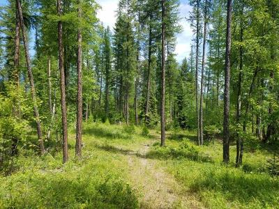 Flathead County Residential Lots & Land For Sale: N.H.N. Haugen Heights