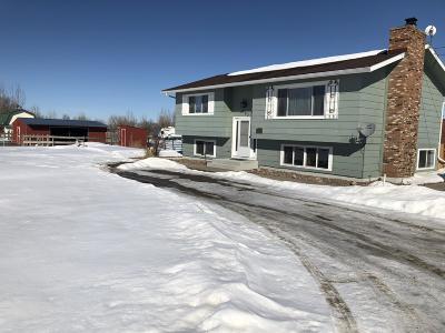 Great Falls Single Family Home For Sale: 233 Sun Loop Lane