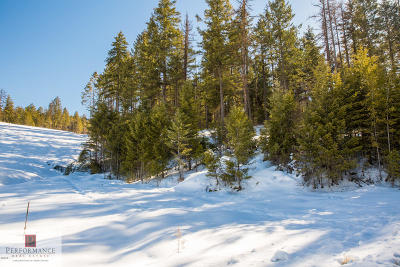 Flathead County Residential Lots & Land For Sale: 100 Tamarack Woods Drive