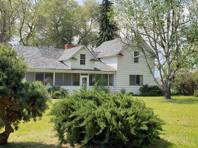 Stevensville Single Family Home For Sale: 3713 Eastside Highway