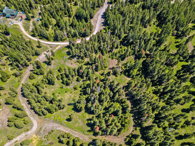 Flathead County Residential Lots & Land For Sale: 54 Wild Turkey Lane