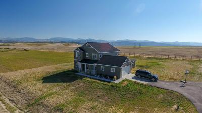 Helena Single Family Home For Sale: 4323 Mica Drive