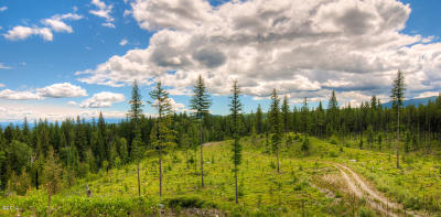 Flathead County Residential Lots & Land For Sale: 435 West Evers Creek Road