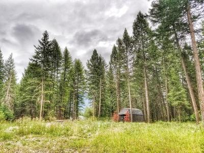 Flathead County Residential Lots & Land For Sale: 25 Ridgeway Court