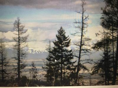 Flathead County Residential Lots & Land For Sale: Nhh Patrick Creek Road