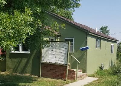 Single Family Home For Sale: 205 Maryland Street North