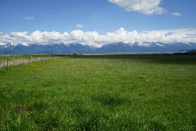 Charlo MT Residential Lots & Land For Sale: $199,950
