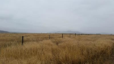 Sanders County Residential Lots & Land For Sale: Nhn Emerson Road
