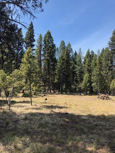 Seely Lake, Seeley Lake Residential Lots & Land For Sale: 805 Montana Drive