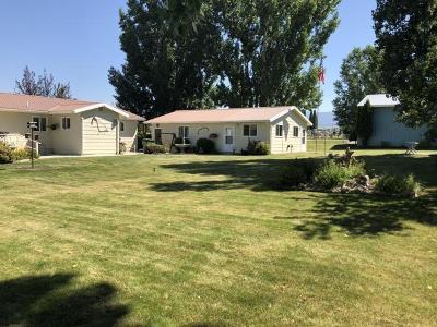 Stevensville Single Family Home For Sale: 4493 Sunnyside Cemetery Road