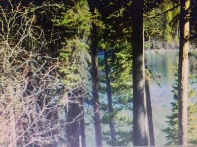 Kalispell Residential Lots & Land For Sale: 3358 Ashley Lake Road