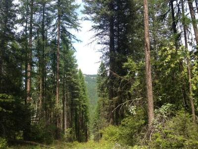 Whitefish Residential Lots & Land For Sale: 2597 Us-93