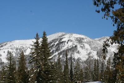 Whitefish Residential Lots & Land Under Contract Taking Back-Up : 165 Woodlandstar Circle