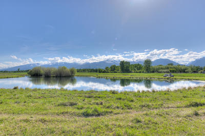 Ravalli County Residential Lots & Land For Sale: 31 Fox Farm Road