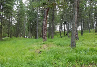 Lake County Residential Lots & Land For Sale: 34445 Narrows View Lane