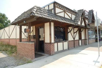 Lincoln County Commercial For Sale: 505 Mineral Avenue