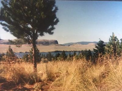 Lake County Residential Lots & Land For Sale: Nhn Cliffview Drive