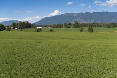 Kalispell Residential Lots & Land For Sale: Birch Grove Road
