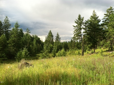 Lincoln County Residential Lots & Land For Sale: Nhn Paradise Ridge Road