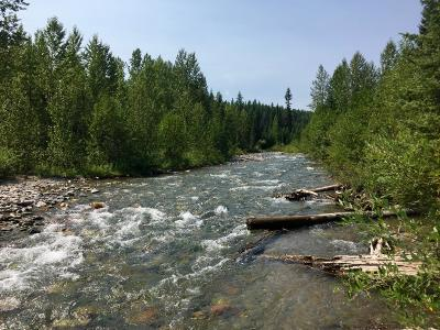 West Glacier, Polebridge Residential Lots & Land Under Contract Taking Back-Up : 816 Deep Woods Trail
