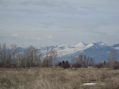 Ravalli County Residential Lots & Land For Sale: 4354 Eastside Hwy