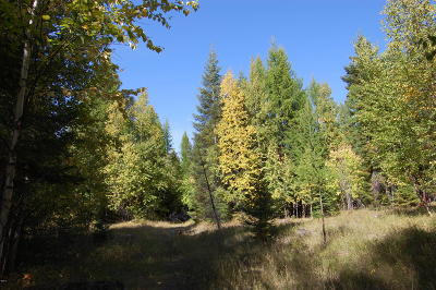 Bigfork Residential Lots & Land For Sale: Lot 10 Wapiti