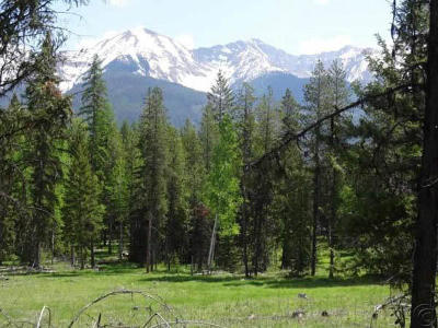 Condon, Potomac, Seeley Lake Residential Lots & Land For Sale: 328 Uffda Drive