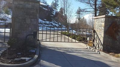Bigfork Residential Lots & Land For Sale: 87 Rock Ridge Way