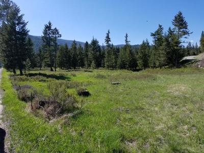 Lake County Residential Lots & Land For Sale: 14 Big Lodge Lane