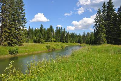 Whitefish Residential Lots & Land For Sale: 259 Buckskin Run