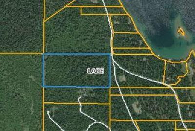 Lake County Residential Lots & Land For Sale: West Swan Shores Lane