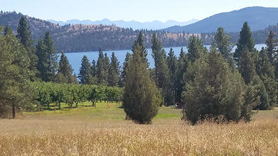 Lake County Residential Lots & Land For Sale: Cedar Hills Drive