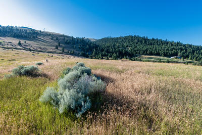 Missoula County Residential Lots & Land Under Contract Taking Back-Up : 3754 Trails End Road