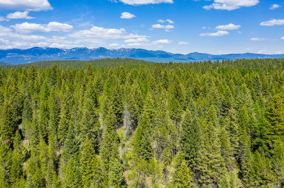 Whitefish Residential Lots & Land For Sale: 460 Whitefish Hills Drive