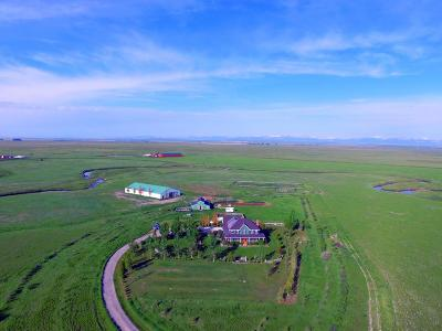 Fort Shaw, Simms, Sun River, Augusta, Brady, Conrad, Dupuyer, Valier, Bynum, Choteau, Dutton, Fairfield, Power Single Family Home For Sale: 1168 Hwy 220