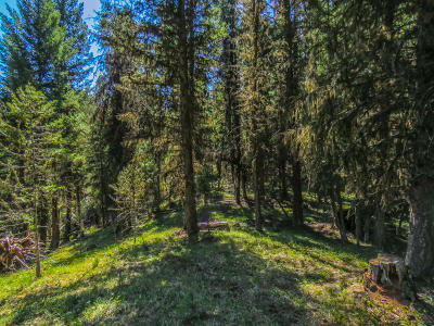 Seely Lake, Seeley Lake Residential Lots & Land For Sale: 1533 Double Arrow Road
