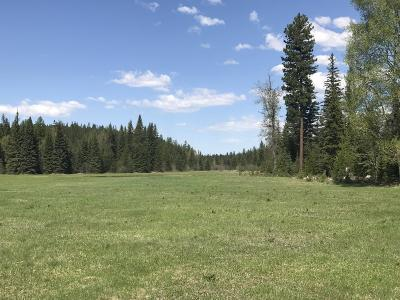 Whitefish Residential Lots & Land For Sale: Nhh Lupfer Road (Big Meadow) Road